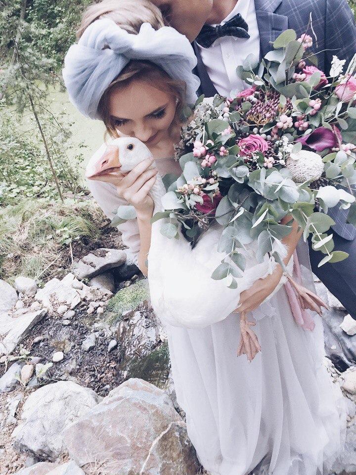 гуси на свадьбе