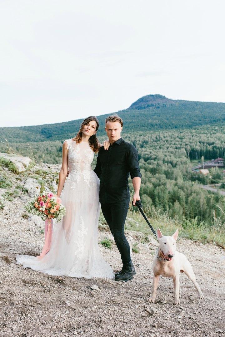 свадебная фотосессия с питбулем