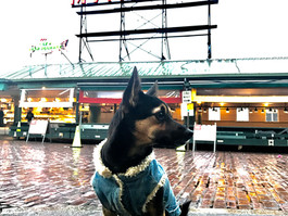 Lincoln Visits Seattle!