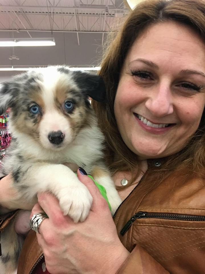Dr. Clare Foley holding Australian Shepard Puppy