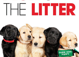 "Rain? That means it's MOVIE time! ""Pick of the Litter"" Opens Tonight at Uptown!"