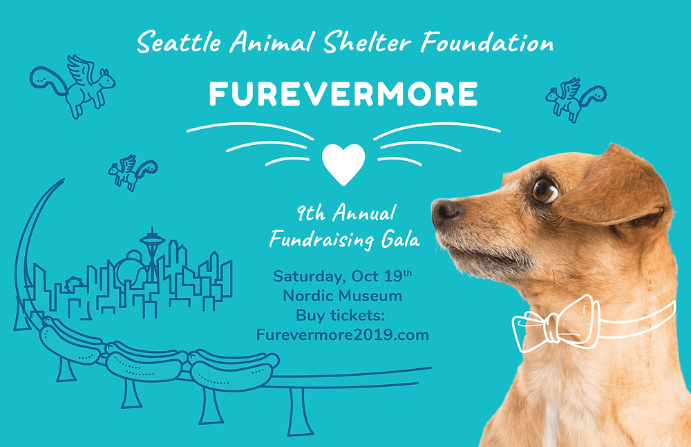 Furevermore poster dog in bowtie