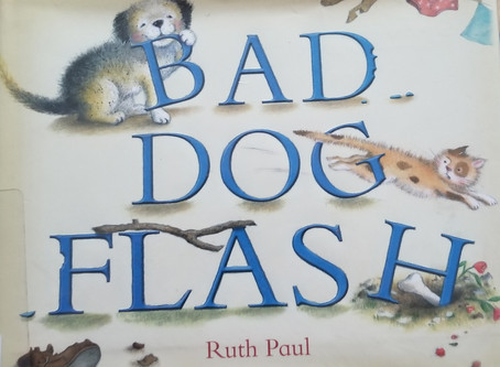 "Seattle Pup Kids Review ""Bad Dog Flash"""