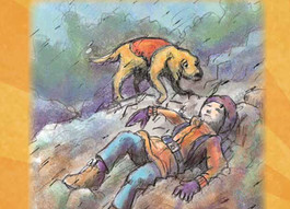 """Seattle Pup Kids: Book Review! """"Bryce Bumps His Head"""""""