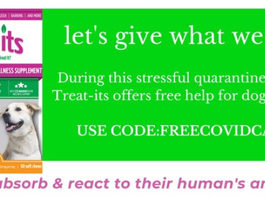 Free COVID CBD Treats from Treat Its!
