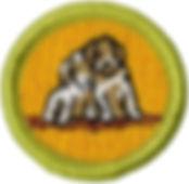 boyscout merit badge.jpg