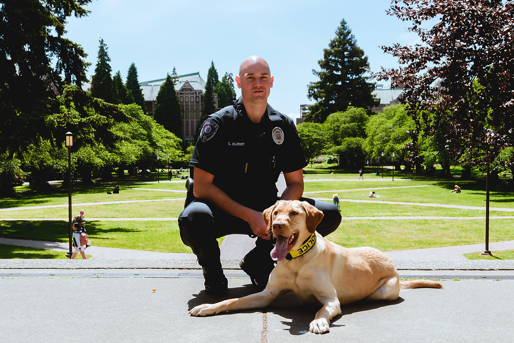 Officer Elldrot and K9 Sam on UW Campus