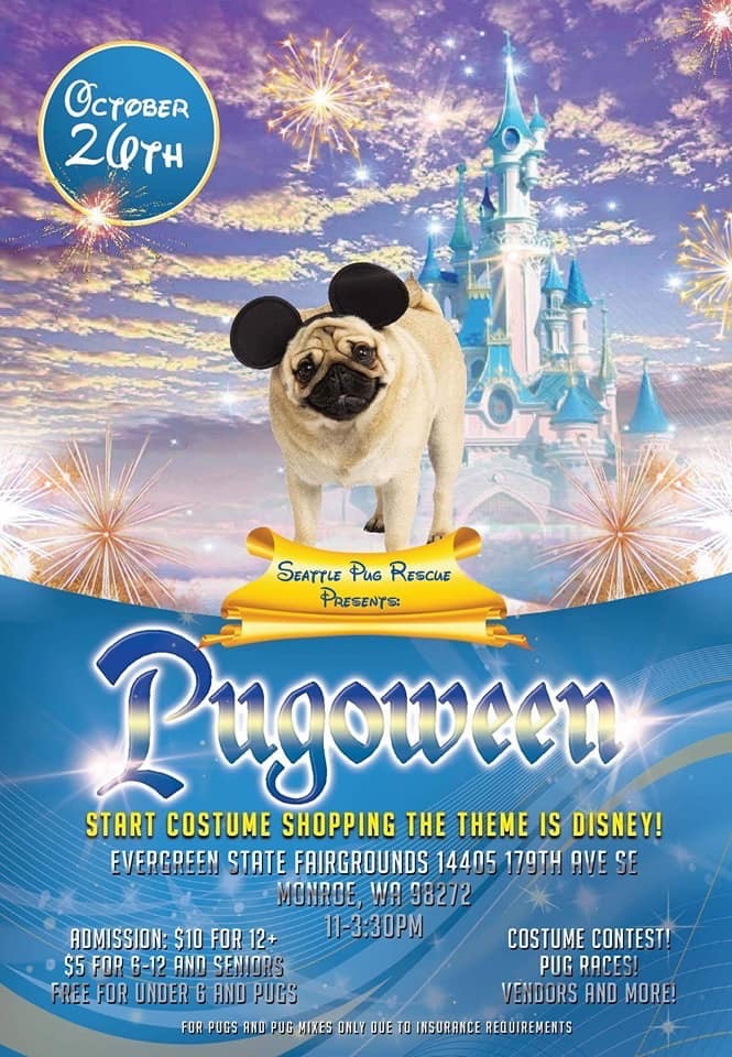 pug in mickey mouse ears