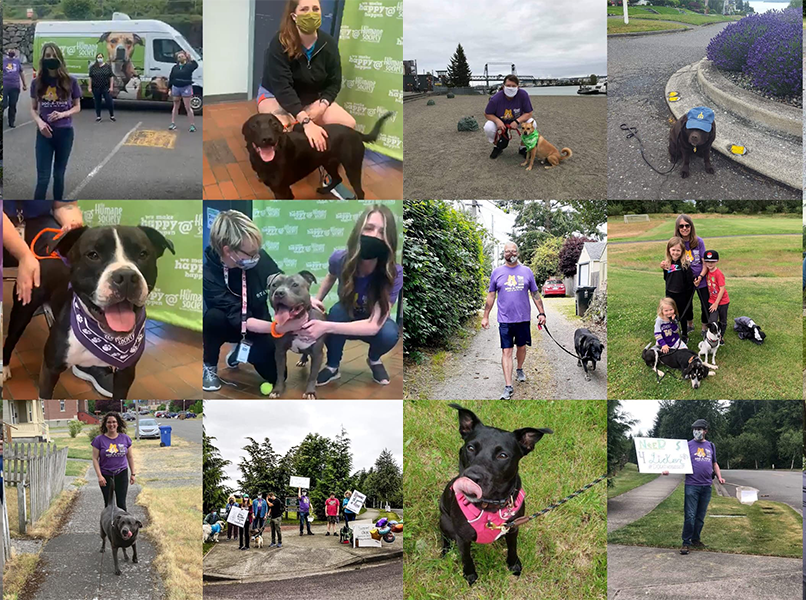 Pierce County's 31st Annual DOG-A-THON the Largest Dog-Friendly 5K of the Year!