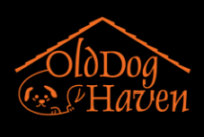 """Song of the Heart"" Old Dog Haven Fundraiser Tomorrow!"