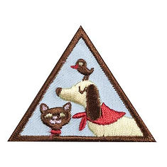 girlscout pet badge.jpg