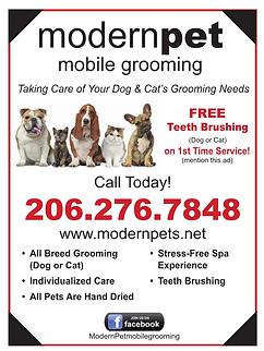 Modern Pet Grooming.bmp