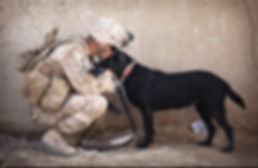 USA soldier in uniform kissing dog