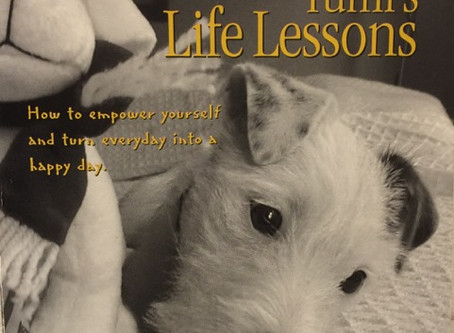 """Seattle Pup Book Review!  """"Yumi's Life Lessons by Kay Hirai"""