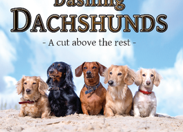 Seattle Pup Book Review! Dashing Dachshunds