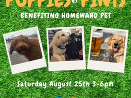 Puppies & Pints at Travour (Tukwila) Fundraiser for Homeward Pet