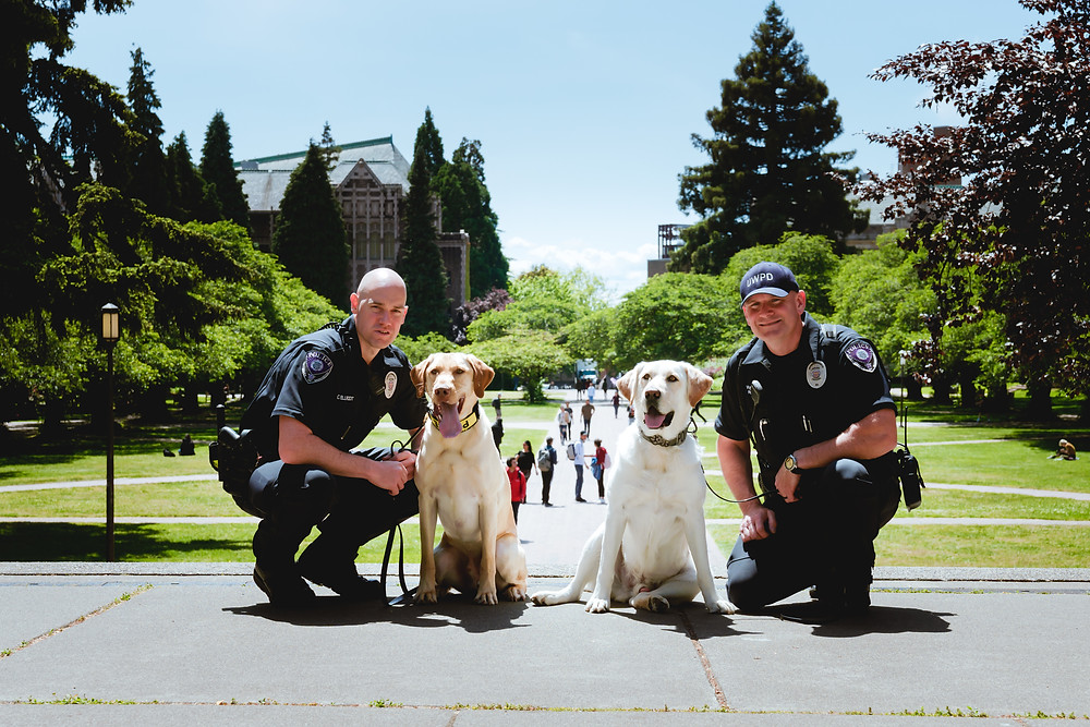 UW Police Officers  and their K9s on UW Campus