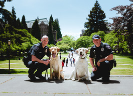 "UW ""Huskies"" Keep Us Safe--By a Nose"