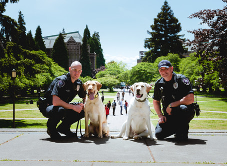 """UW """"Huskies"""" Keep Us Safe--By a Nose"""