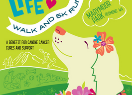 Love to Walk or Run? or Just Hang Out? Wag. Love. Life! 5K (Free Registrations Available)