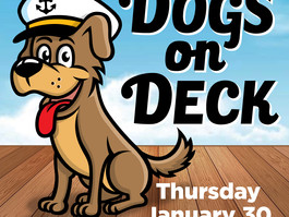 Dogs AHOY! Dogs on Deck @ the Seattle Boat Show! (Thursday Jan. 30, 2020)