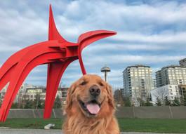 Sinatra Visits Seattle!