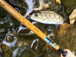 6.25 [SUP+fishing!!] レポート