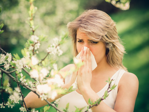 Homeopathy for Hay Fever