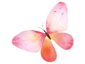 butterfly red.png