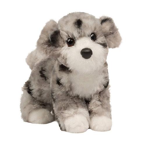 Douglas - Miles Aussie Doodle Dog