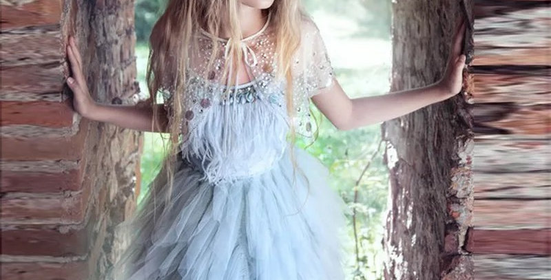Swan Queen Tutu Dress-Wathet Blue