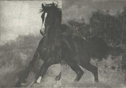 Hevonen II