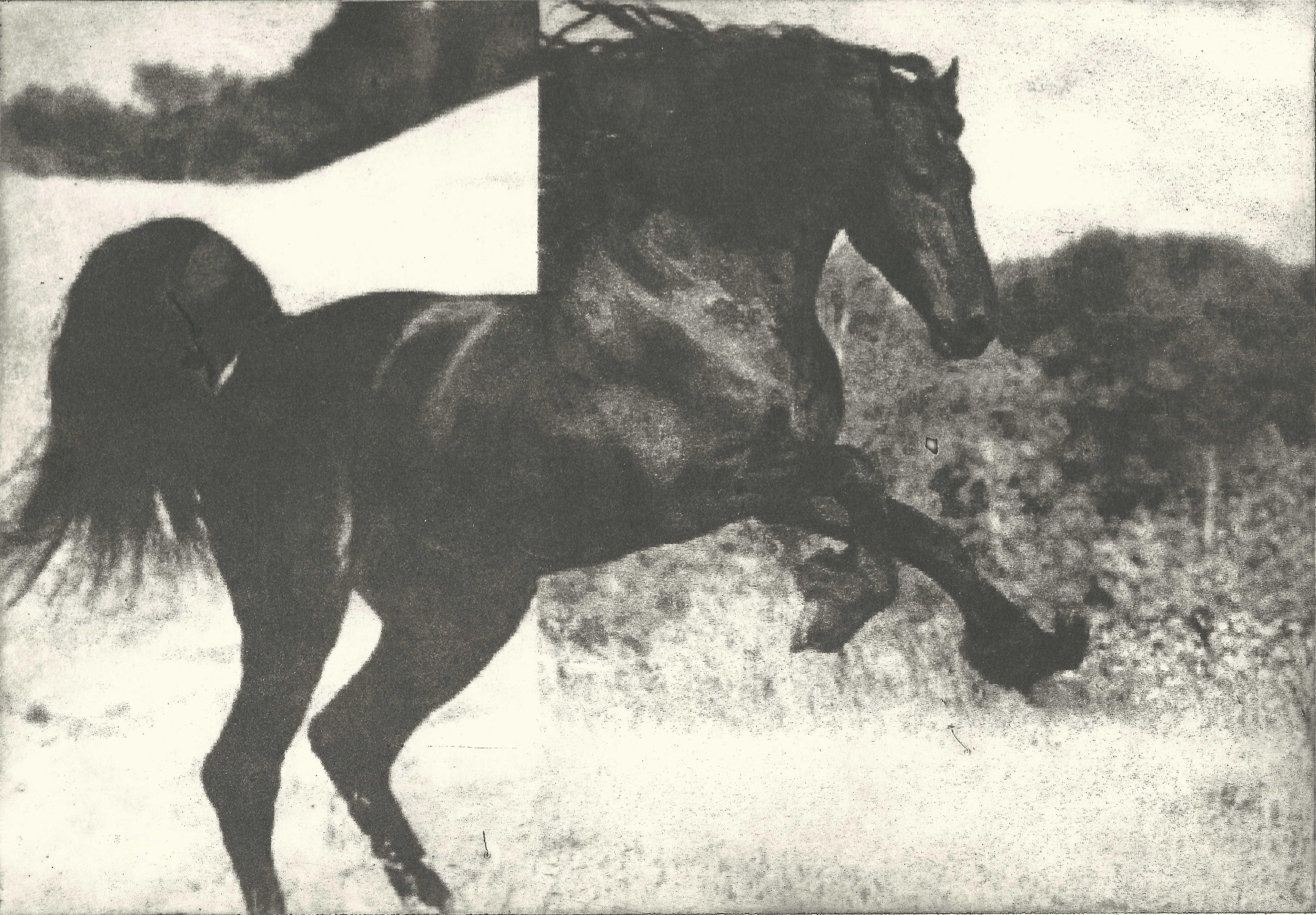Hevonen VI