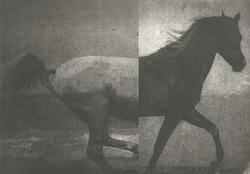 Hevonen IV