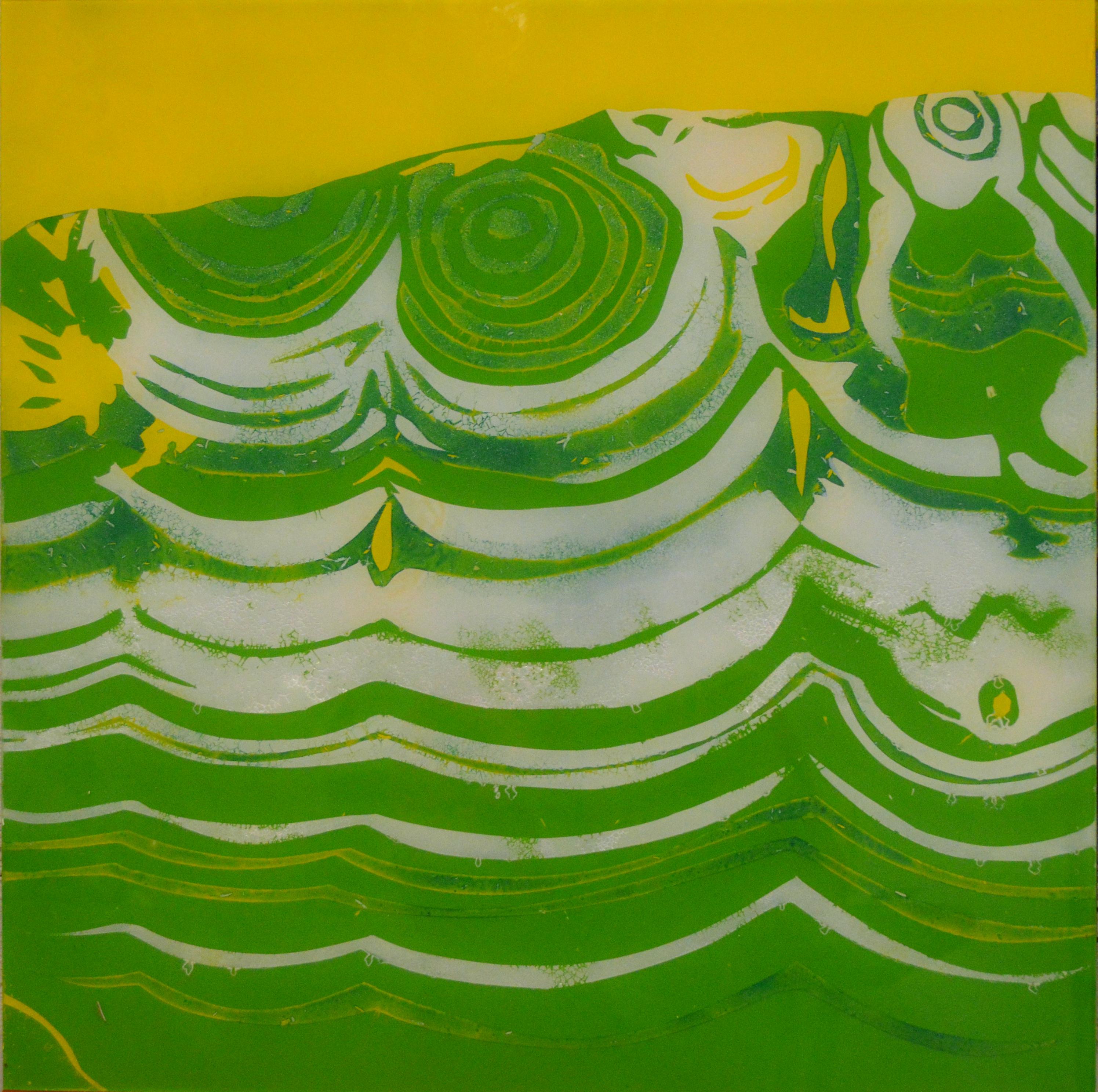 Levä / Algae
