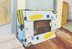 Saima in a bananabox