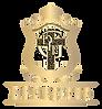 dfgp logo.png