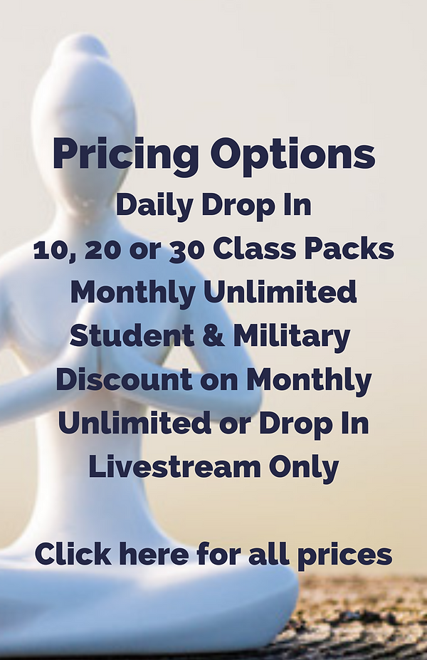 Pricing Options Daily Drop In 10, 20 or