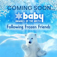 Baby Animals of the Arctic
