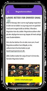 in app weblink.png