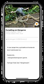event_præsentation_regnskoven.png
