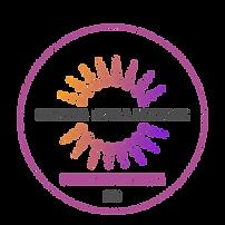 NDN logo.png