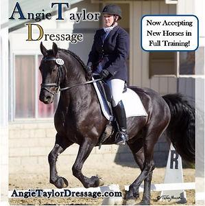 Angie ads.jpg