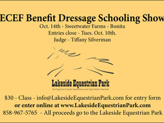 Dressage Show to Benefit New Lakeside Venue