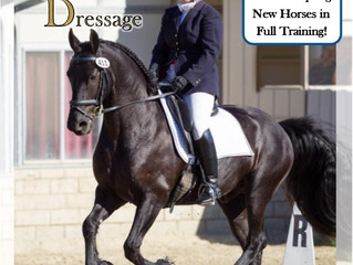 Angie Taylor: Angie Taylor Dressage