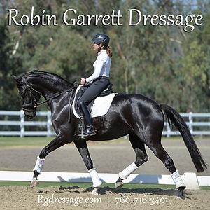 Robin Garrett _horse_ad.jpg