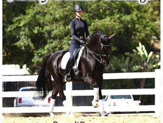 Ashley Donadt: Donadt Dressage