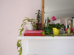 middleton pink farrow and ball dining room