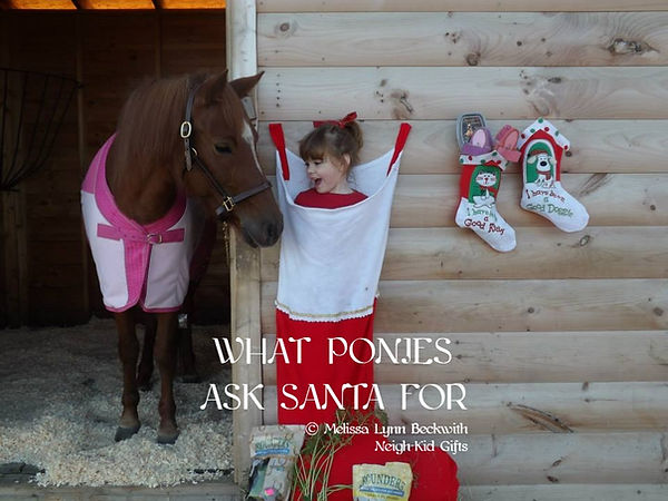 What Ponies Ask Santa For #whatponiesasksantafor pony receives a litte girl for Christmas What ponies want for Christmas Christmas Pony #christmaspony pony girl and pony