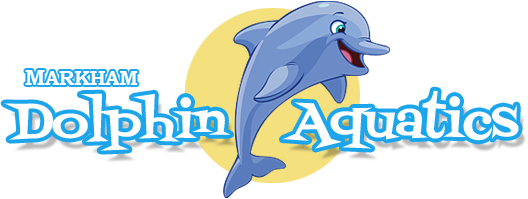 Markham Dolphin Aquatics Swimming Lessons